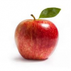 Apple Taste Testing & Orchard Tour in Grand Marais
